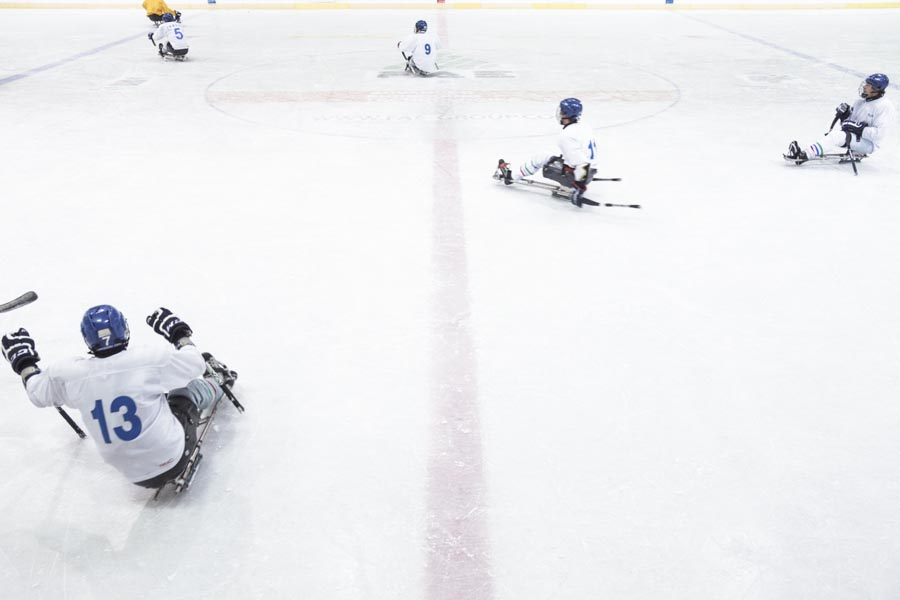 SLEDGE HOCKEY, ICE,ARENA, Andrea Chiarotti, COACHING, DISABLED, GAME, ICE, ICE SCATING ARENA, ITALIA, International, Italian, NATIONAL TEAM, PARALYMPICS, PARALYMPICS GAME, Paralympic, Paralympic Winter Paralympics, RINK, SLEDGE HOCKEY, SOCHI, SPORT, TEAM, Trentino Alto Adige, WHITE, blue, captain, challenge, confrontation, disk, field, flag bearer, fondo, force, goal, hall, helmet, hook, ice stadium, indoor, line, opportunity, physical strength, points, puck, russia, score, slide, stick, strain, suit, temperature, training, trento, uniform, val di non, will, workout